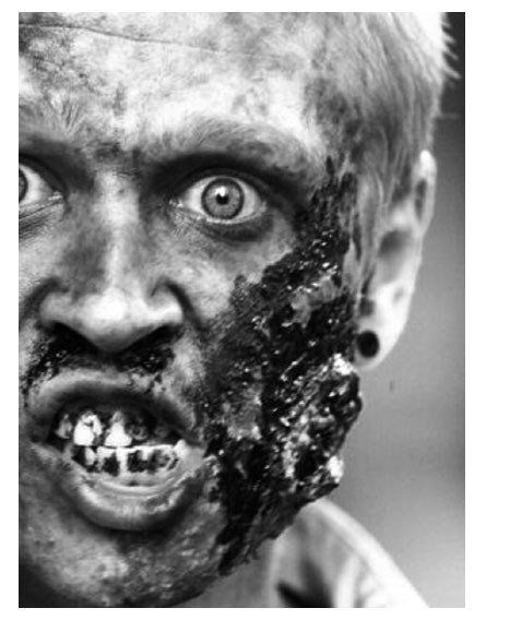 the ethnobiography of the haitian zombie Find and save ideas about haitian zombies on pinterest | see more ideas about baron samedi, zombie haiti and voodoo the ethnobiology of the haitian zombie.